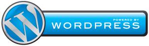 WordPress Eller Skræddersyet CMS Til Din Hjemmeside?